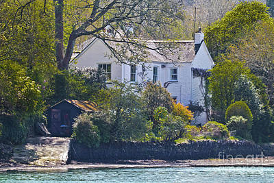 Creekside Cottage Poster by Terri Waters