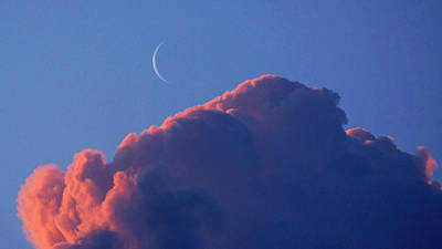 Crescent Moon In The Pink Poster