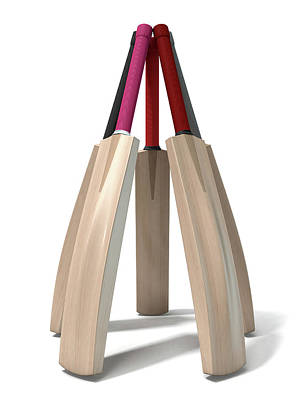 Cricket Bat Circle Poster by Allan Swart