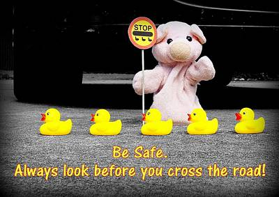 Crossing The Road Poster by Piggy