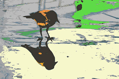 Crow Watch Himself Poster by Benny Blitzblau