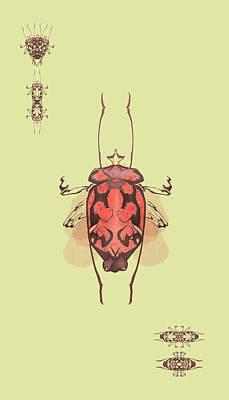 Crowned Horn Bug Specimen Poster