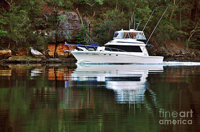Poster featuring the photograph Cruising The River By Kaye Menner by Kaye Menner