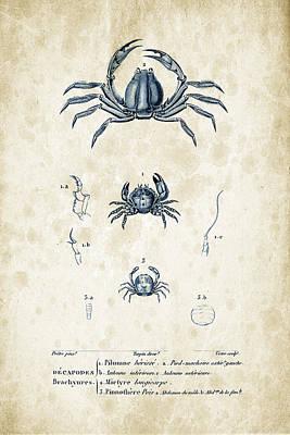 Crustaceans - 1825 - 09 Poster