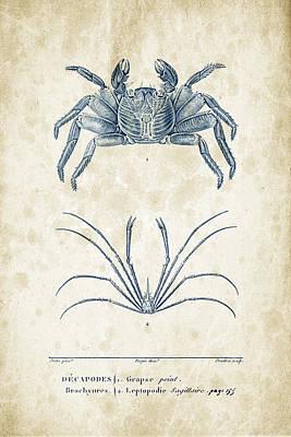 Crustaceans - 1825 - 14 Poster