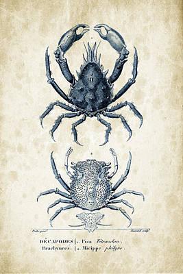 Crustaceans - 1825 - 20 Poster