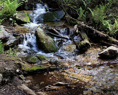 Poster featuring the photograph Crystal Clear Creek by Ben Upham III