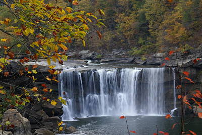 Cumberland Falls In Gold Poster