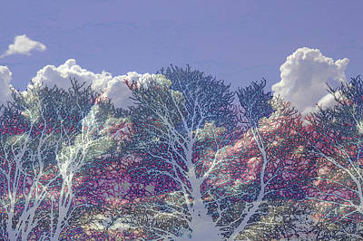 Poster featuring the photograph Cumulus And Trees by Nareeta Martin