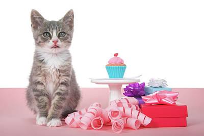 Cupcake Kitten Party Poster