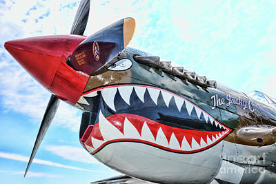 Curtiss P-40k The Warhawk  Poster