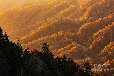 Smoky Mountain Roads Poster