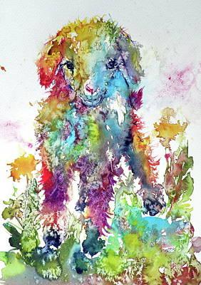 Cute Baby Goat In Grass Poster by Kovacs Anna Brigitta