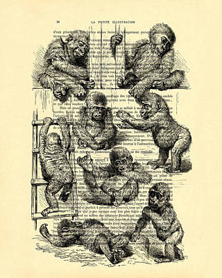 Baby Monkeys Playing Black And White Antique Illustration Poster by Madame Memento