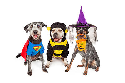 Cute Dogs Wearing Halloween Costumes Poster