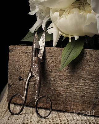 Cutting Flowers Poster by Edward Fielding