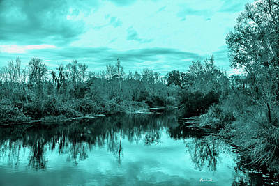 Poster featuring the photograph Cyan Dreaming - Sarasota Pond by Madeline Ellis