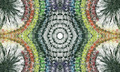 Cymatics Geometry #1548 Poster by Rainbow Artist Orlando L aka Kevin Orlando Lau
