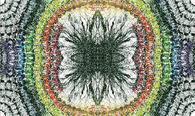 Cymatics Geometry #1550 Poster by Rainbow Artist Orlando L aka Kevin Orlando Lau
