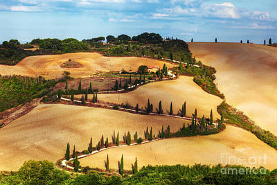 Cypress Trees Serpentine Road In Tuscany, Italy. Amazing Tuscan Landscape Poster by Michal Bednarek