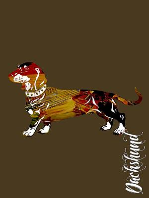 Dachshund Collection Poster