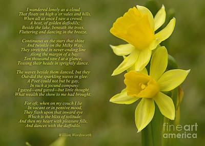 Daffodils Poem By William Wordsworth Poster