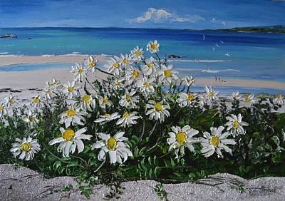 Daisies Coral Strand Connemara Poster