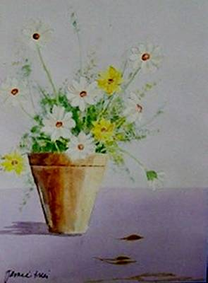 Daisies In Pot Poster by Jamie Frier