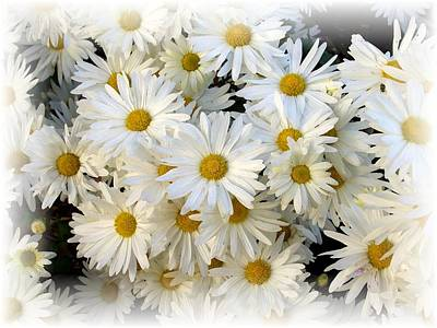 Daisy Bouquet Poster by Carol Sweetwood