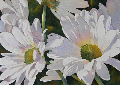 Daisy Bunch Poster by Judy Mercer