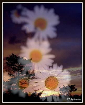 Daisy Dawn Poster