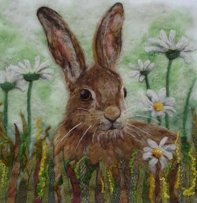 Daisy Hare Poster