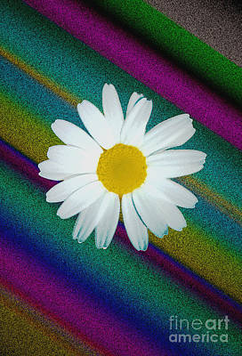 Daisy With Physchedelic Background Poster by ImagesAsArt Photos And Graphics