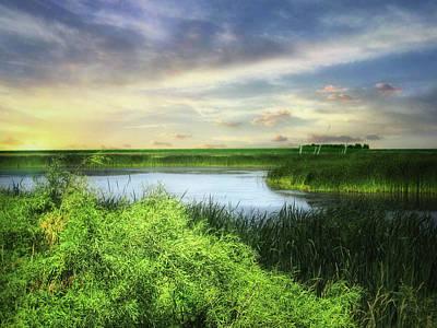 Dakota Wetlands 7 Poster