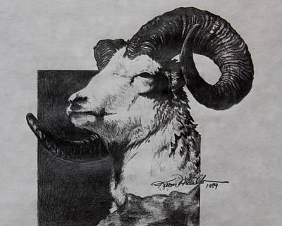 Dall Ram Poster by Karon Melillo DeVega