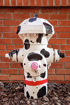 Poster featuring the photograph Dalmation Hydrant by James Eddy