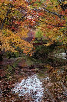 Danbury Bridge In Fall Poster