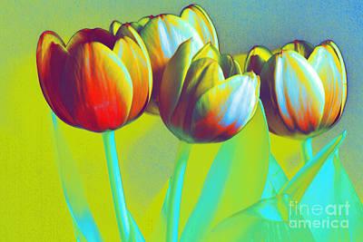 Dancing Tulips Poster by Karen Lewis