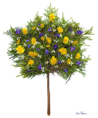 Poster featuring the photograph Dandelion Violet Tree by Lise Winne