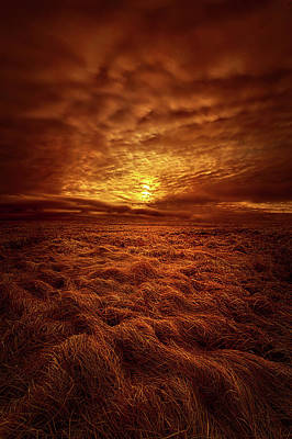 Dare I Hope Poster by Phil Koch
