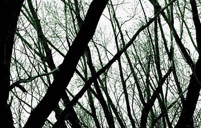 Dark Limbs Poster by Steven Milner
