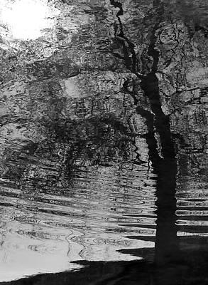 Dark Vision Poster by Steven Milner
