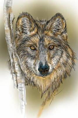 Poster featuring the digital art Dark Wolf With Birch by Darren Cannell