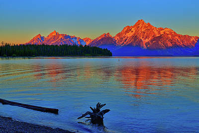 Dawn At Colter Bay Poster by Greg Norrell