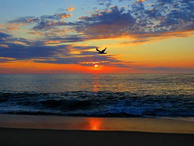 Dawning Flight Poster by Dianne Cowen