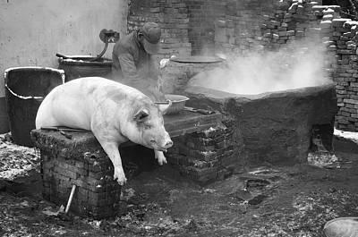 Dead Pig Poster by Jean De la Barriere