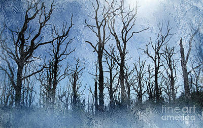 Dead Trees In Blue Poster by The Rambler