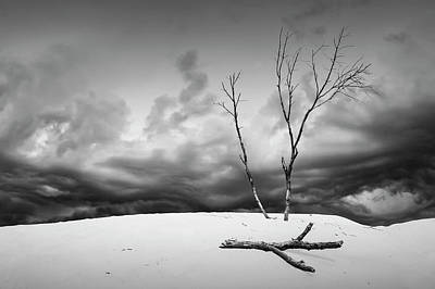 Dead Trees With Wind Swept Clouds Over The Dunes Poster by Randall Nyhof