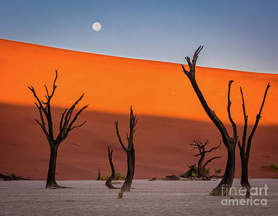Deadvlei Full Moon Poster