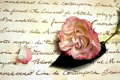 Dear Rose Poster by Kathy Bucari